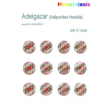 https://tienda.holosintesis.com/1127-thickbox_default/medallon-adelgazar.jpg