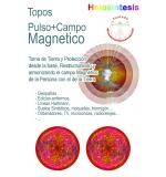 Topos Pulso & Campo Magnético x 2