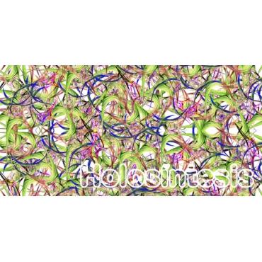 https://tienda.holosintesis.com/2360-thickbox_default/14-mm-pulso-campo-magnetico.jpg