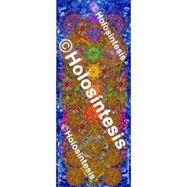 https://tienda.holosintesis.com/571-thickbox_default/stora-pequena-celulitis-sistema-linfatico.jpg